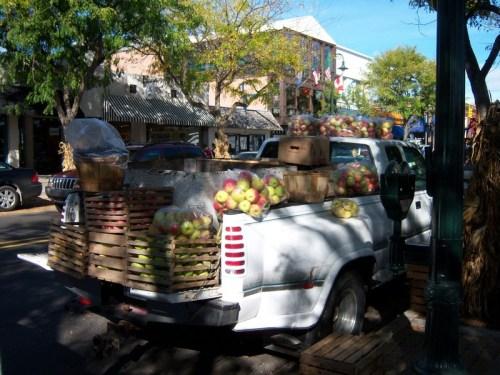 apples, fall festival