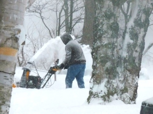 burt snowblowing