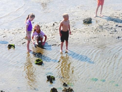 kids on sand bar